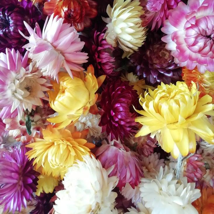 Les fleurs de Bouquet de Cire
